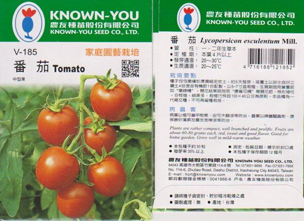 【尋花趣】農友種苗 番茄-中果 蔬果種子  每包約40粒 保證新鮮種子