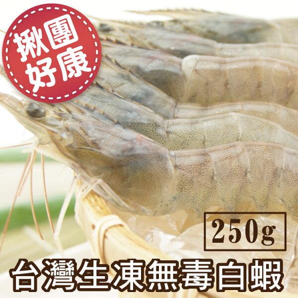 【築地藏鮮】台灣生凍無毒白蝦 250g/盒 (2盒組/5盒組/10盒組)   約15尾/盒   免運到府