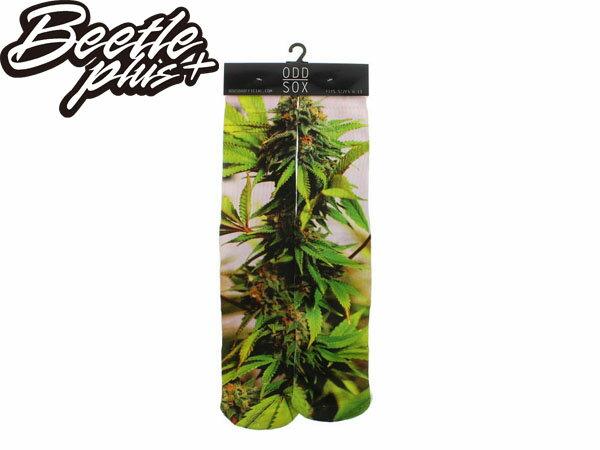 BEETLE PLUS 西門町 美國品牌 全新 現貨 ODD SOX THE SATIVA PLANT SOCKS 大麻 水稻 植物 高筒襪 MN-238 - 限時優惠好康折扣