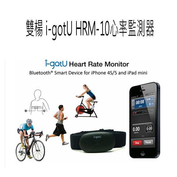 雙揚 HRM-10 藍牙心率監測器 心率追蹤器~斯瑪鋒科技~