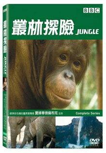 叢林探險 DVD Jungle BBC 靈長類 昆蟲 鱷魚 鸚鵡 大水瀨 亞馬遜 剛果 森林 (音樂影片購)