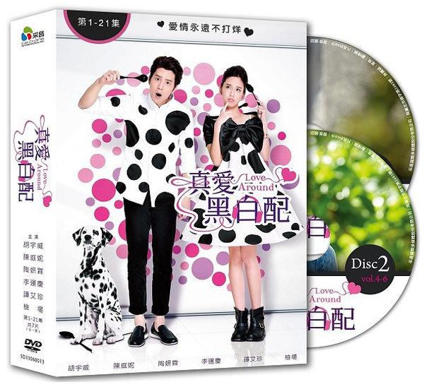 真愛黑白配 DVD 全21集 台劇 (音樂影片購)