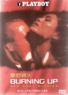 愛的過火 DVD PLAYBOY限制級名模攝影師人性灰心生命賭局綁架銀行搶犯 (音樂影片購)