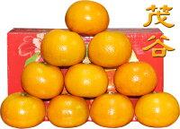 年貨大街 : 年貨伴手禮、餅乾禮盒、水果禮盒推薦到✿仲菁✿納福茂谷柑禮盒-10斤-免運費
