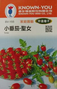 """【尋花趣】小番茄-聖女 農友種苗 """"特選蔬果種子"""" 每包約6粒 保證新鮮種子"""