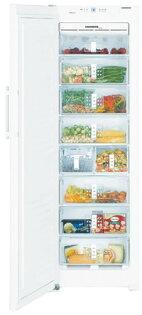 嘉儀 LIEBHERR  利勃 SGN3011 獨立式冷凍櫃 (256公升)【零利率】※熱線07-7428010
