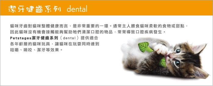 +貓狗樂園+ Petstages【dental潔牙健齒系列。335。口氣清新薄荷棒】130元 1