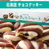 年貨大街 : 年貨伴手禮、餅乾禮盒、水果禮盒推薦到日本進口 北海道香濃巧克力餅乾禮盒 / 伴手禮 [JP493]