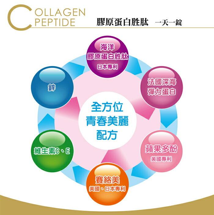『121婦嬰用品館』BIOline星譜生技 膠原蛋白胜肽(60錠) 2