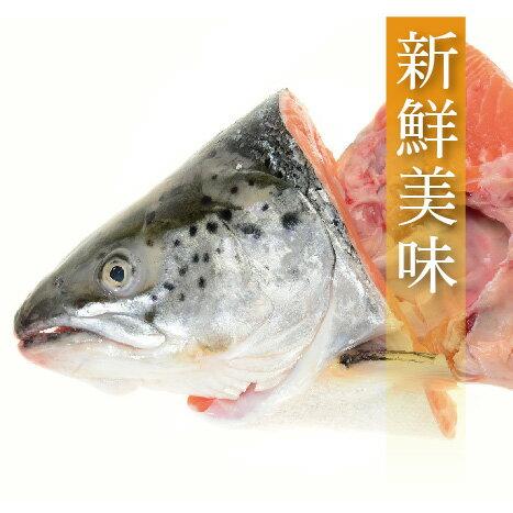 【有魚碼頭】鮮凍鮭魚頭(剖半)(500~600g/份)