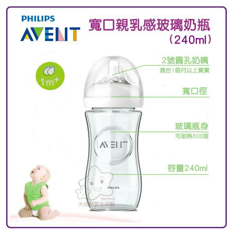 【大成婦嬰】AVENT  寬口親乳感玻璃奶瓶(E65A102002) 240ml / 1入 1