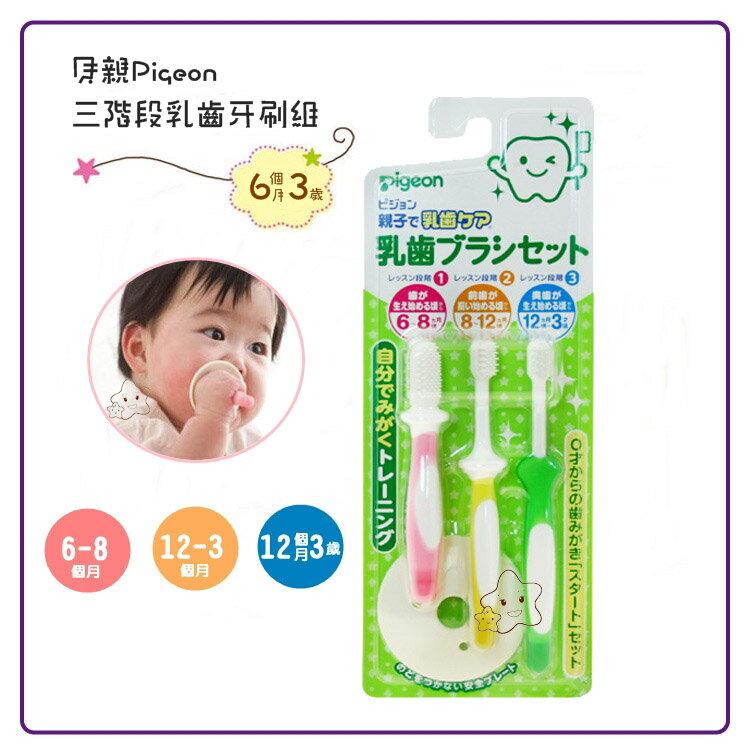 【大成婦嬰】Pigeon 貝親 三階段乳齒牙刷組(6~16個月以上)10541 安全牙刷 - 限時優惠好康折扣