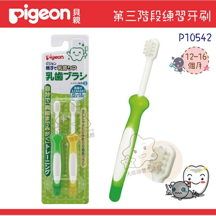 【大成婦嬰】Pigeon 貝親 第三階段乳齒牙刷組(12~16個月以上)10542 0