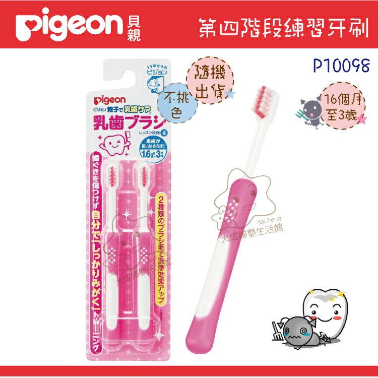【大成婦嬰】Pigeon 貝親 第四階段乳齒牙刷組(6個月~3歲)10098 0