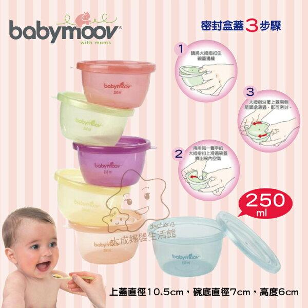 【大成婦嬰】法國 babymoov 嬰兒食物保存碗250ml(6入) 分裝盒 保存盒 可微波、消毒、冷凍