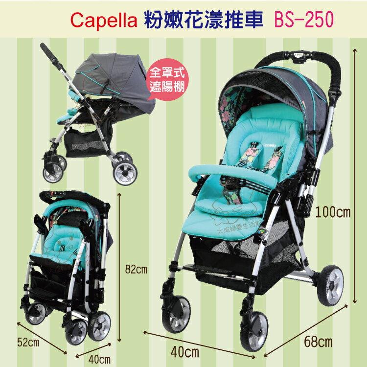 【大成婦嬰】Capella 銀離子 雙向秒收 花漾手推車 BS-250 0