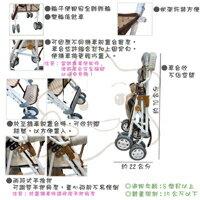 【大成婦嬰】可拆式-遮陽簡易手推車/機車椅 TT-521(運費$150) 2
