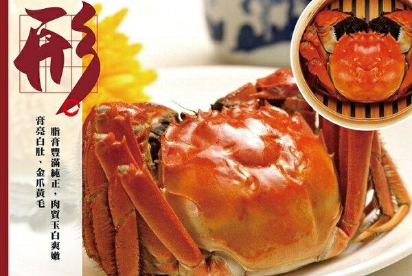 您還在吃抗生素的大閘蟹嗎?台灣首創魚菜共生大閘蟹開始上市嘍 五兩重45隻入,再送五隻 ,包運費