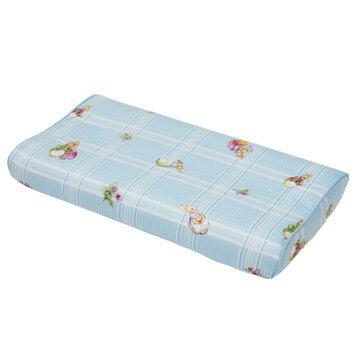 『121婦嬰用品館』狐狸村 矽膠嬰兒健康枕-藍 1