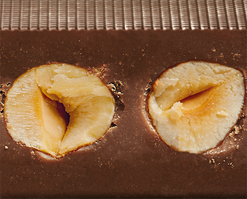 【派尼克帝PERNIGOTTI】義大利進口金磚巧克力★顆粒榛果70%黑巧克力塊~經典黑金禮盒裝72g★ 2