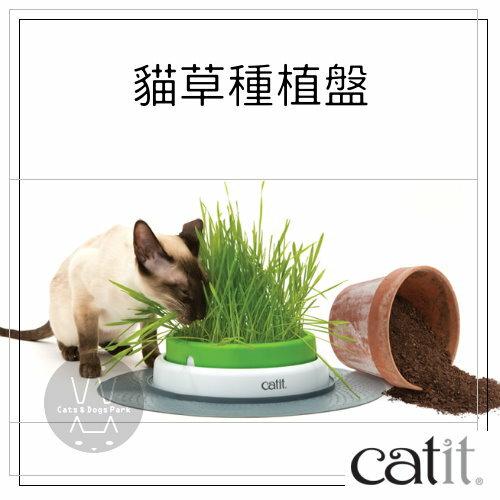 +貓狗樂園+ CATIT|喵星2.0樂活。貓草種植盤(不含種子)|$590 0