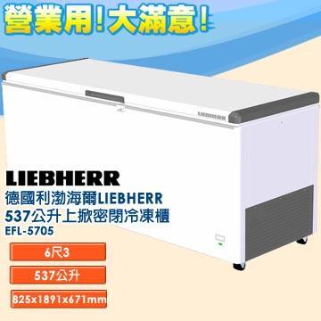 德國利勃 海爾 LIEBHERR 537公升 上掀密閉冷凍櫃 EFL-5705 含鎖、指針式溫度計 外觀四周採圓弧設計