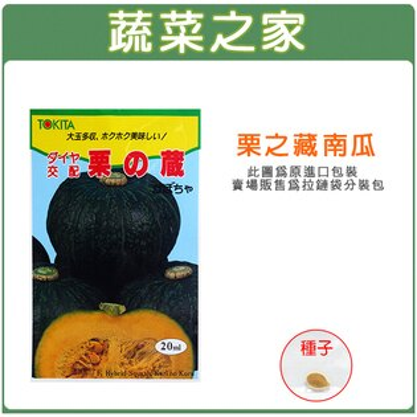 【蔬菜之家00G47】大包裝G47.栗子南瓜種子15顆(栗?藏)