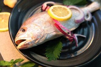 鮮甜白口魚 2尾入 700g