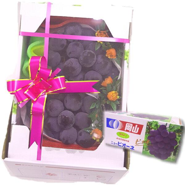 花菓山水果 日本岡山進口貓眼葡萄禮盒(2kg/盒)