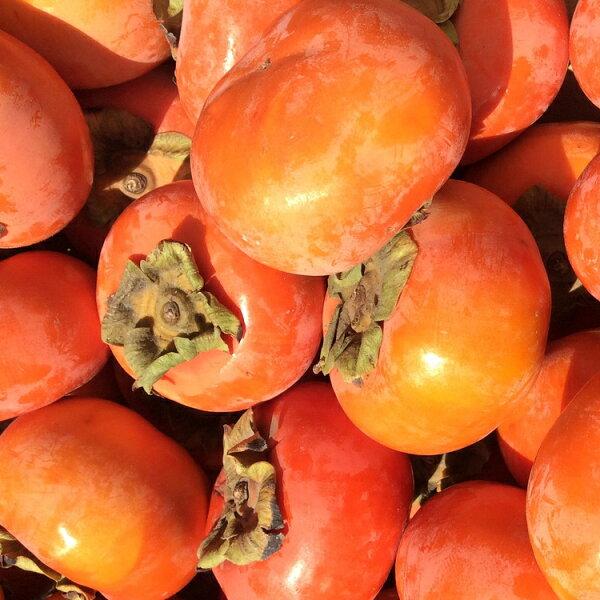 【免運】 超甜中顆(7-8兩)甜柿6顆裝♡保證新鮮好吃♡【10/7 PM23:59加碼!全館滿$600最高折$100✶10/8 AM9:59最高現折$132✶】♡