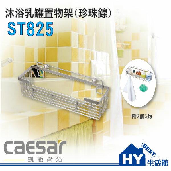 凱撒衛浴精選 Caesar 不鏽鋼置物架 瓶罐架 ST825+ST825-1 沐浴乳罐置物架+S鉤