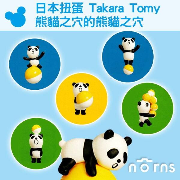 NORNS 【日本扭蛋 Takara Tomy熊貓之穴的熊貓之穴】貓熊 皮球 公仔 轉蛋