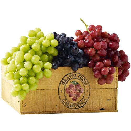 【台北濱江】三色無籽葡萄3kg盒(紅黑綠三種葡萄各1kg)