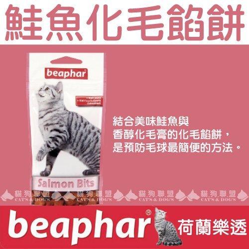 +貓狗樂園+ 荷蘭beaphar【樂透愛貓。鮭魚化毛餡餅。大。150g】270元 0