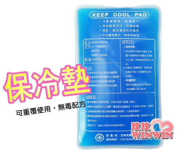 FANTASY 保冷墊 (一入裝) 配合母乳護送袋使用 ~ 延長母乳保存時間,運送更方便