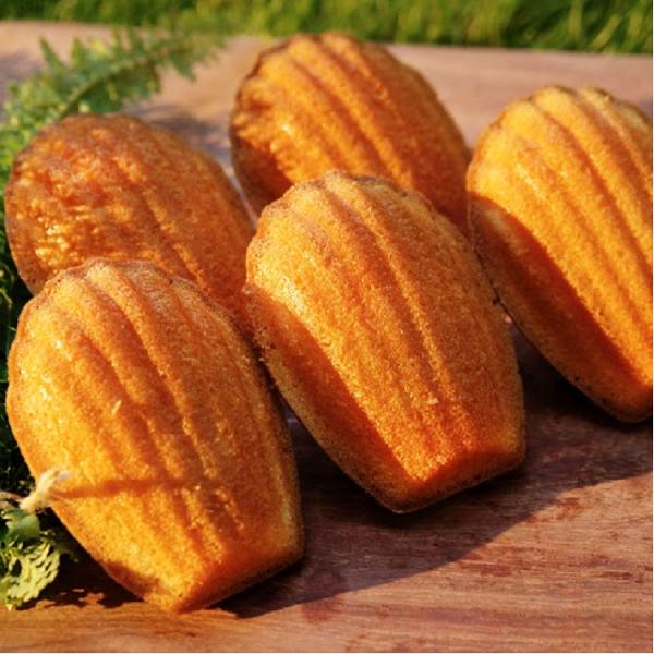 慢爐 檸檬瑪德蓮/進口黃檸檬/法國頂級奶油/飽滿色澤優美/柔軟清香