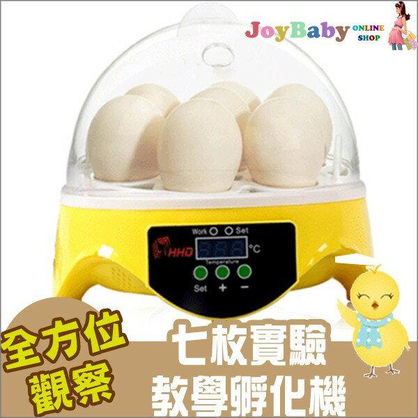 孵蛋機/孵化機/最新7枚自動控溫迷你孵化器 鳥蛋雞蛋烏龜蛋鴿子蛋110V [免運費]【joybaby】