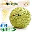 【ecowellness】環保1KG重量藥球C010-00711(抗力球健身球復健球.韻律球訓練球重力球重球.運動健身器材.推薦哪裡買)