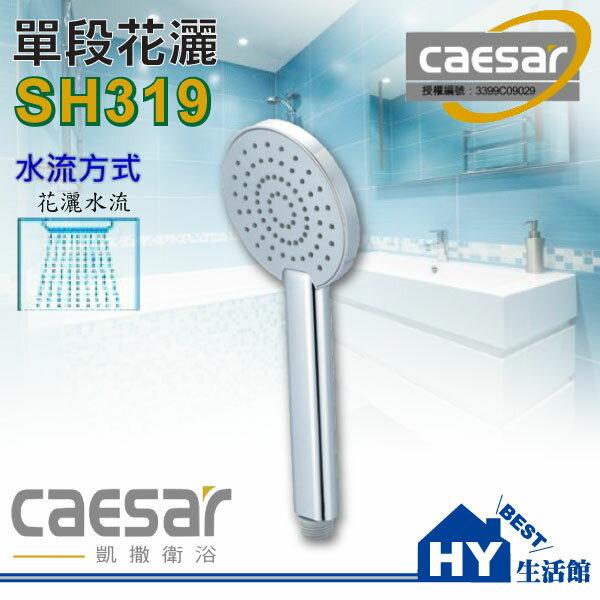 【凱撒Caesar】SH319單段按摩花灑握把 / 蓮蓬頭把手 / 沐浴把手《HY生活館》水電材料專賣店