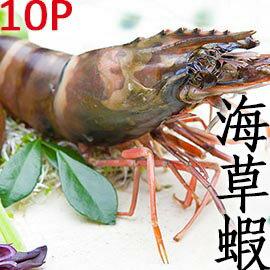 ㊣盅龐水產 ◇越南草蝦12隻裝◇ 330g/盒 零$185 烤肉 火鍋 餐廳 團購 歡迎批發