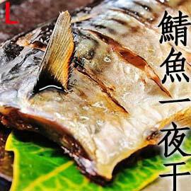 ㊣盅龐水產 ◇鯖魚一夜干L(裕)◇165-195g/片 每片70元 薄鹽鯖魚 一夜干 (歡迎.批發.團購 )