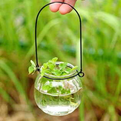 PS Mall 玻璃南瓜吊籃彩色條紋狀風信子 花瓶吊飾 【J610】