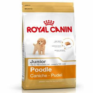 ♥WaWa♥法國皇家-貴賓犬幼犬專用3KG(PRPJ33)