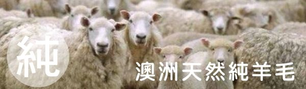 棉被/羊毛被/100%雙人澳洲羊毛被【輕柔乾爽、蓬鬆、MIT台灣製、SGS檢驗通過 】6x7尺 #寢國寢城 4
