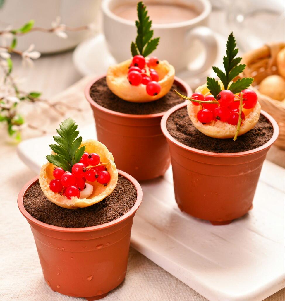~吉爾斯~盆栽蛋糕~愛的種子^~希望小樹,口感綿密的提拉米蘇 覆盆子酸酸甜甜 帶出幸福甜蜜