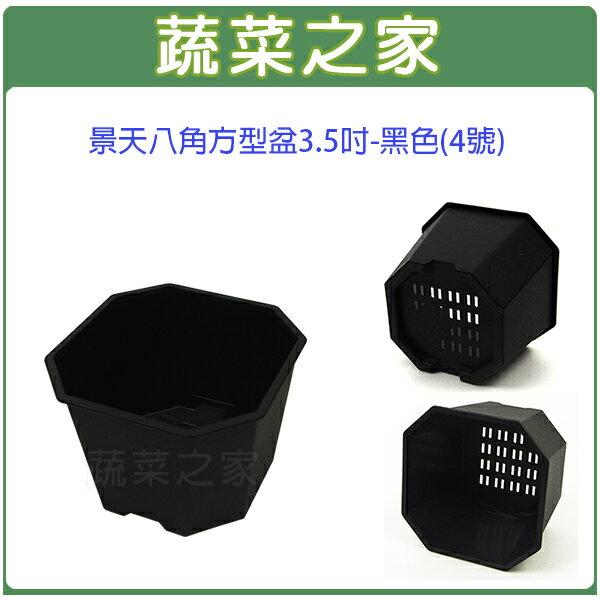 【蔬菜之家005-D117-BL】景天八角方型盆3.5吋-黑色(4號)