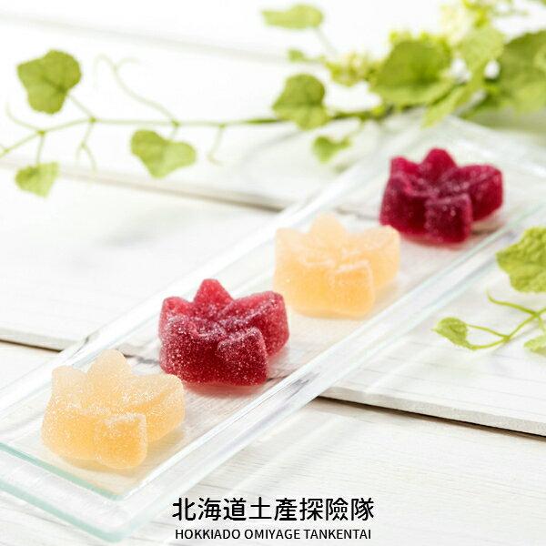「日本直送美食」[HORI] 一口果實法式軟糖禮盒 ~ 北海道土產探險隊~