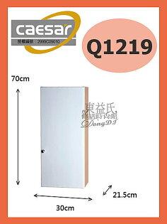 【東益氏】Caesar 凱撒衛浴Q1219單門長吊櫃浴室置物架/置物櫃『售TOTO.電光牌.京典.和成』