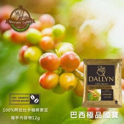 【DALLYN】巴西國寶極品濾掛咖啡100袋入 Brasil Bourbon Santos | DALLYN世界嚴選莊園 1