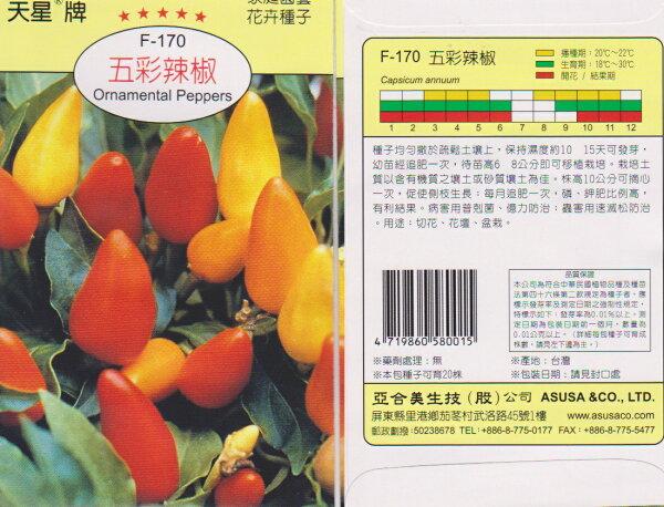 【尋花趣】天星牌 五彩辣椒 花卉種子 每包約75 粒 保證新鮮種子